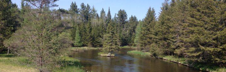 Ausable River (8)