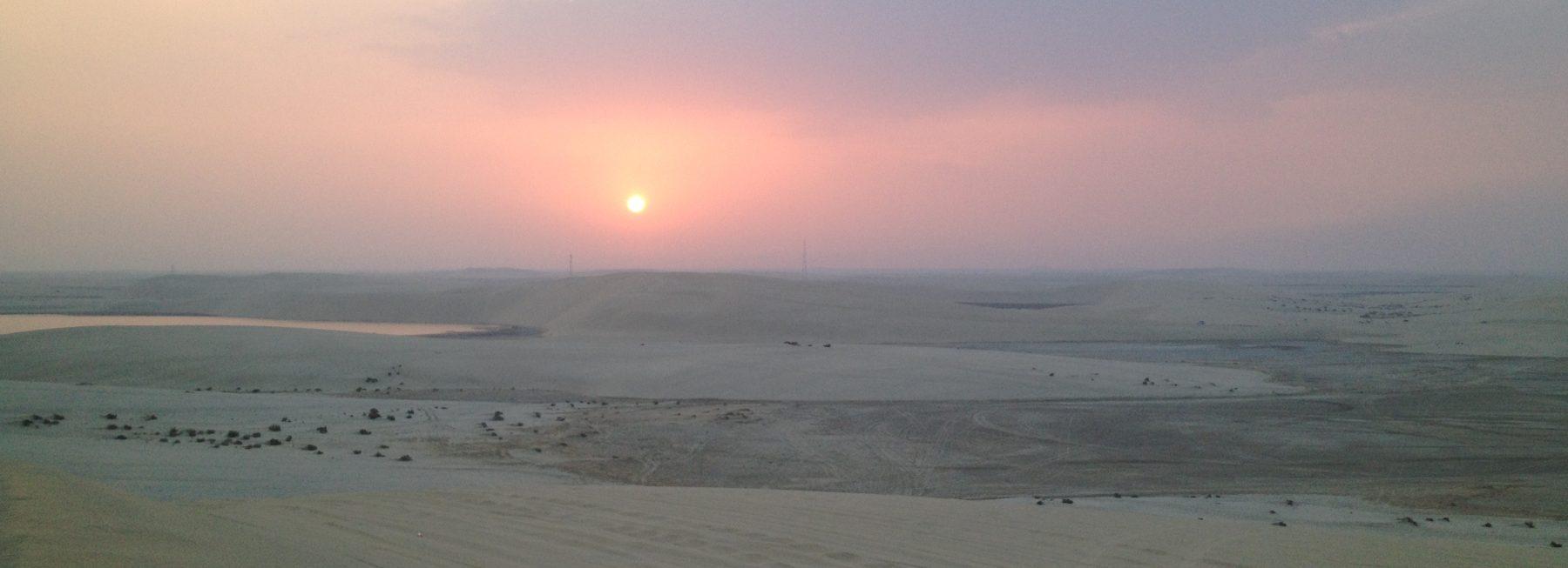 Desert Safari (21)