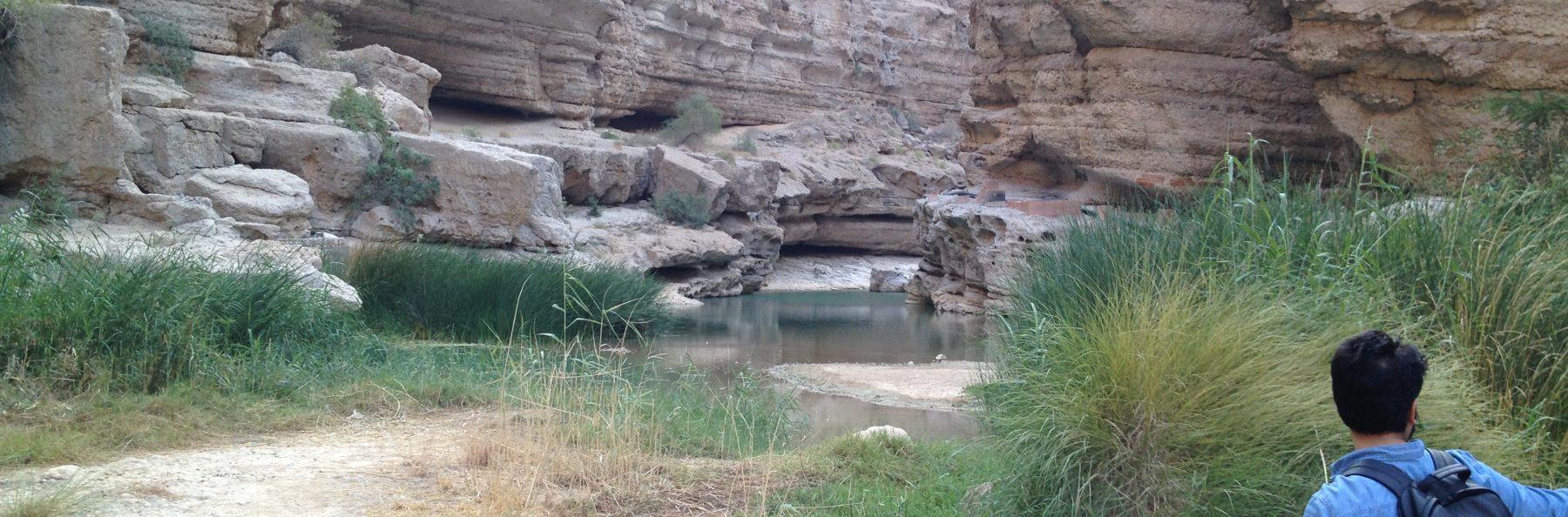 Wadi Shab (12)